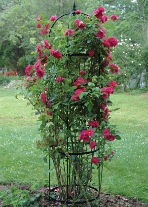 LARGE ROSE PILLAR OBELISK
