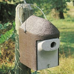 1 1/4 PREDATOR PROOF BIRDHOUSE