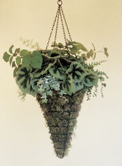 BLACK 12 CONICAL HANGING BASKET
