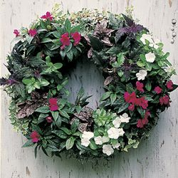 LARGE 24 LIVING WREATH FORM (WITH JUTE LINER)