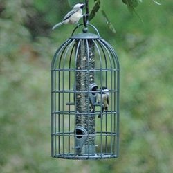 ORIGINAL 'NUTTERY' SEED FEEDER