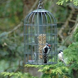 2 IN 1 EXTRA LARGE FEEDER