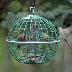 GLOBE SEED FEEDER
