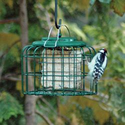 OVAL SUET FEEDER
