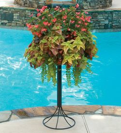 "16"" BASKET & PATIO STAND COMBO KIT"