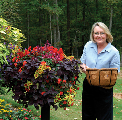 "14"" Single Tier Basket Planter & Liner Set"