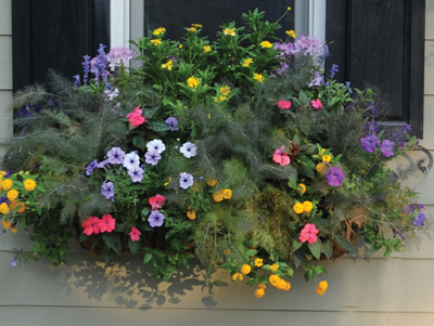 36 WINDOW BOX PLANTER & LINER SET