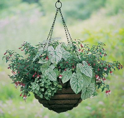 HANGING BASKET AND COCO-FIBER LINER SET