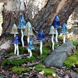 Magical Mushrooms Special Set Of 5