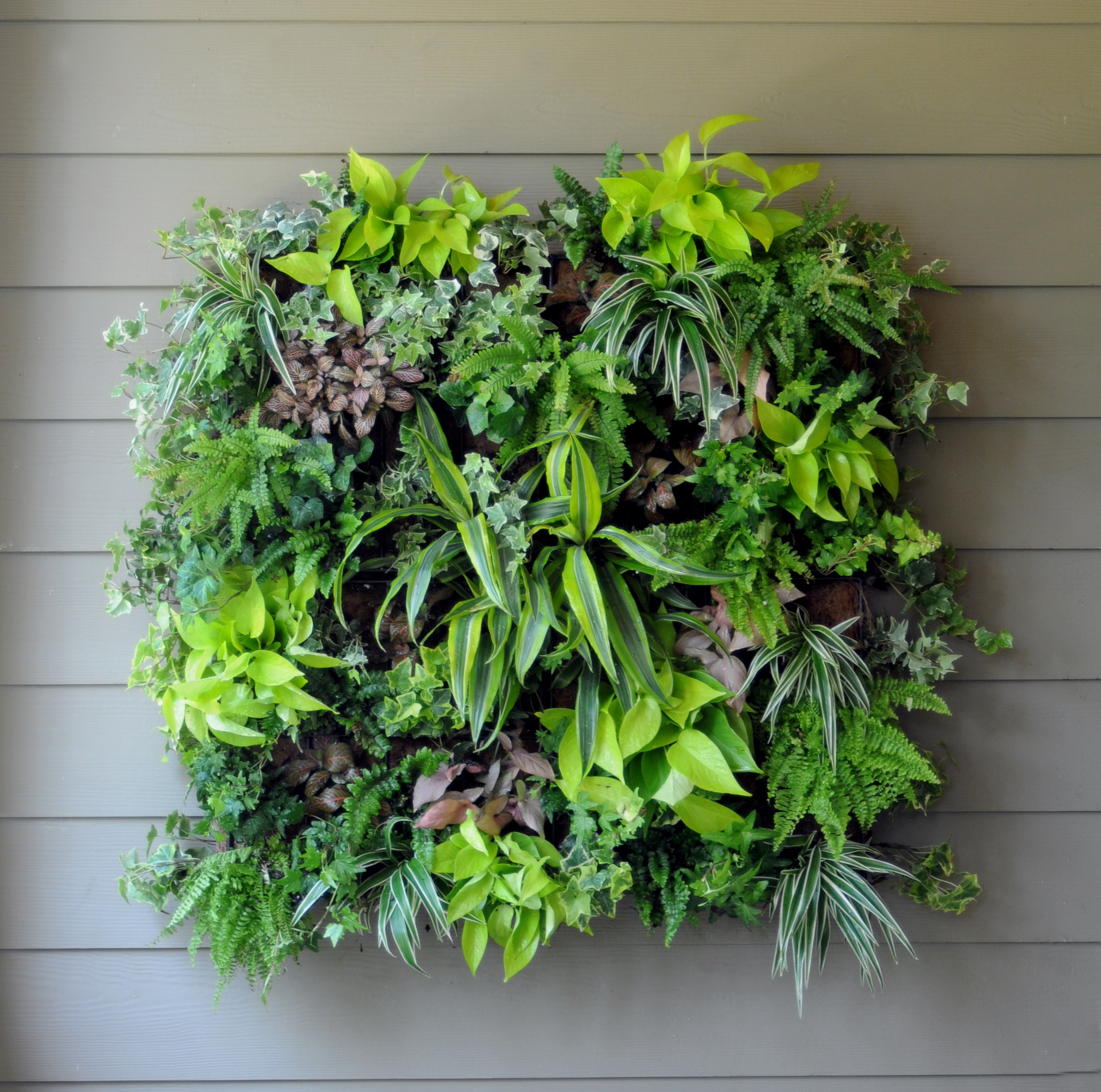 PAMELA CRAWFORD LIVING WALL PLANTER W/LINER
