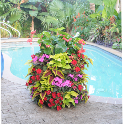 Basic Basket Planters Pamela Crawford Flower Tower