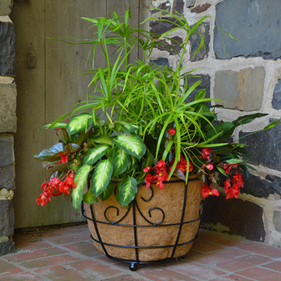 "17"" Patio Planter w/Coco Fiber Liner"