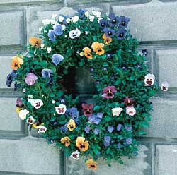 "Small 16"" Living Wreath Form with Jute Liner"
